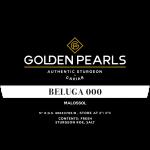 Beluga 000